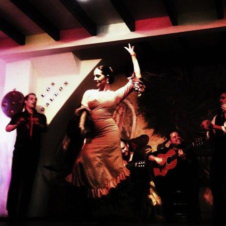 Tablao Flamenco Los Gallos: !!!