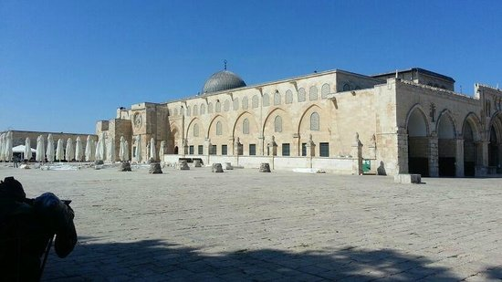 Sharm Vacations Excursion - Day Tours : Al-Aqsa Mosque