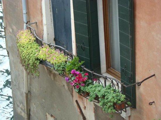 Hotel La Forcola: view