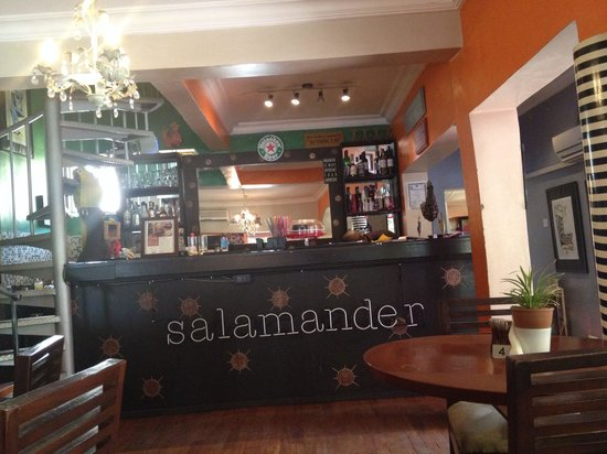 Salamander Cafe: The bar!
