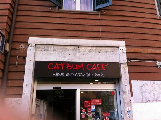 Cat Bum Cafe
