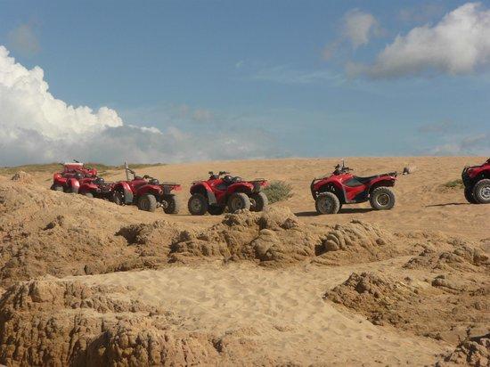 Cactus ATV Tours: Taking a break at a beautiful beach spot on the tour