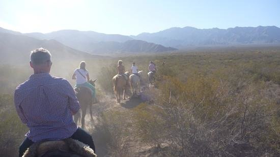 Los Pingos Horse Riding : scenery