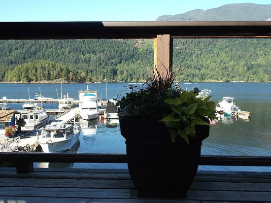 Backeddy Marine Pub: The view beyond the deck