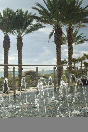 Marriott Stanton South Beach : Vista area piscina e mar ao fundo