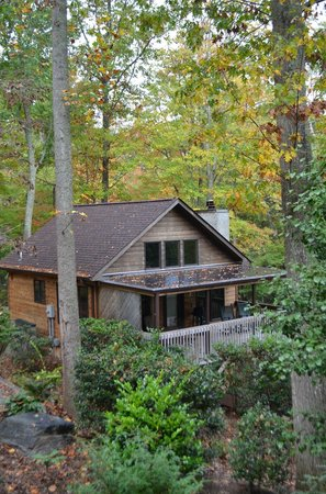 Asheville Cabins of Willow Winds: an identical cabin next door to ours