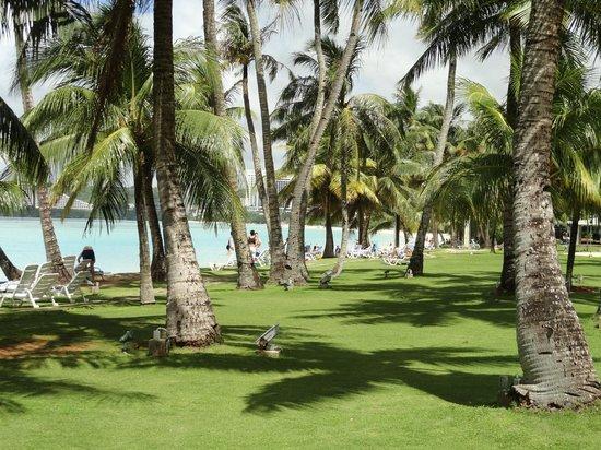 Fiesta Resort Guam: Лужайка для детей