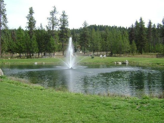 Bear Creek Lodge: Fountain