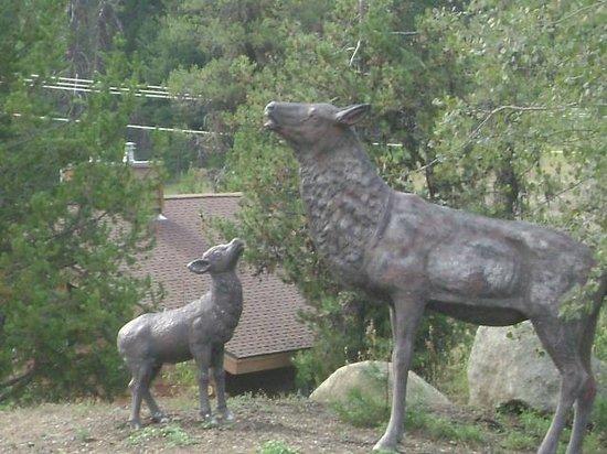 Bear Creek Lodge: statue