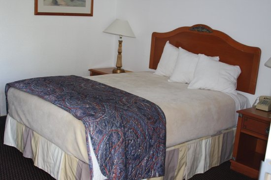 Days Inn & Suites Needles: one bed