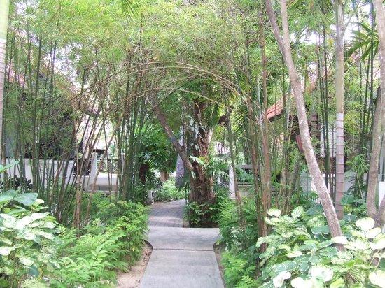 Peace Resort: garden of eden