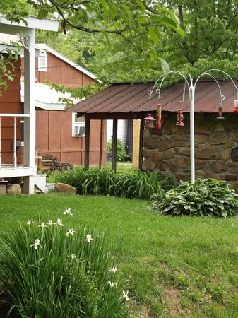 Dragon's Rest Cabins : Spring time