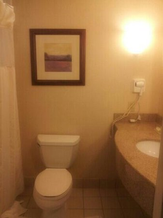 Hilton Garden Inn Atlanta East/Stonecrest: bathroom
