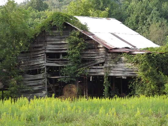 Dragon's Rest Cabins : The Old Barn