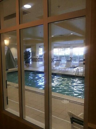 Hilton Garden Inn Atlanta East/Stonecrest: pool