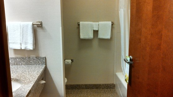 Drury Inn & Suites Orlando: Bathroom