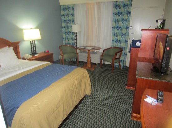 Comfort Inn On The Ocean : The Room