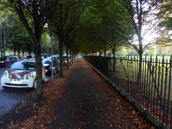 Morehampton Townhouse: Tree lined avenue through nearby Herbert Park