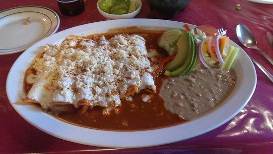 Restaurant Bar Campestre: Amazing chicken enchiladas!