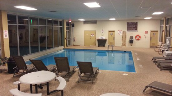 Holiday Inn Cleveland - Mayfield: Pool    - Holiday Mayfield