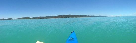 Clairview, Austrália: The view from a kayak looking back at BarraCrab Caravan Park