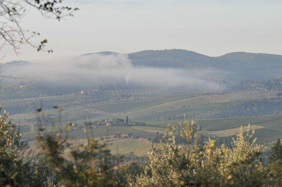 Ancora del Chianti Eco BB & Art Retreat in Tuscany : Incredible views
