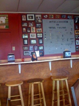 Tucker Duke's: Framed photos of customer's dogs in