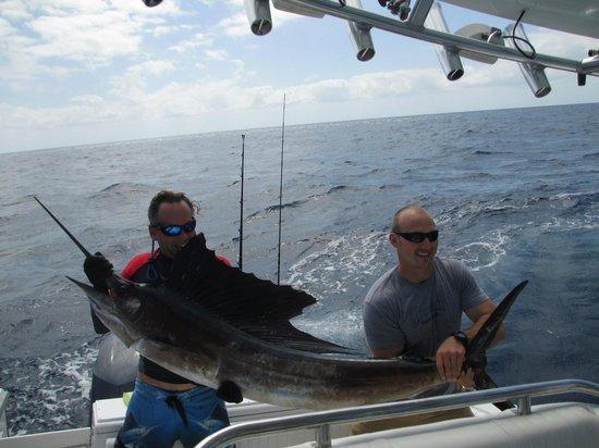 Lower Keys Adventure Charters: Harlan wrestles a Sailfish
