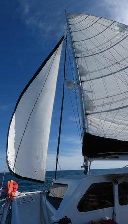 Island Sailing onboard Te Aura - Waiheke Island: Under Sail