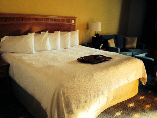 Hampton Inn Hallandale Beach/Aventura : Bed