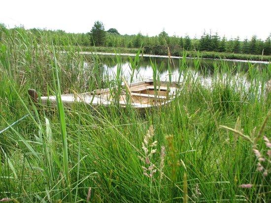 Clondanagh Cottage : Row boat on Clondanagh Lake.