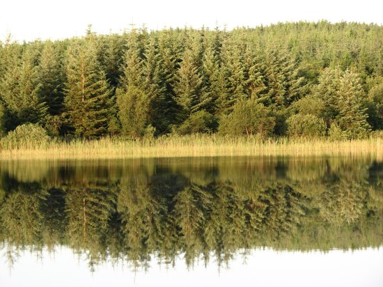 Clondanagh Cottage: Reflection on Clondanagh Lake.