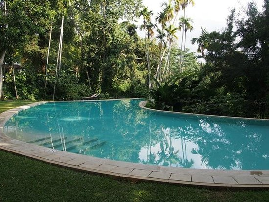 The Kandy House : Swimming pool