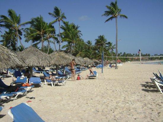 Tropical Princess Beach Resort & Spa: PLAYA DEL HOTEL