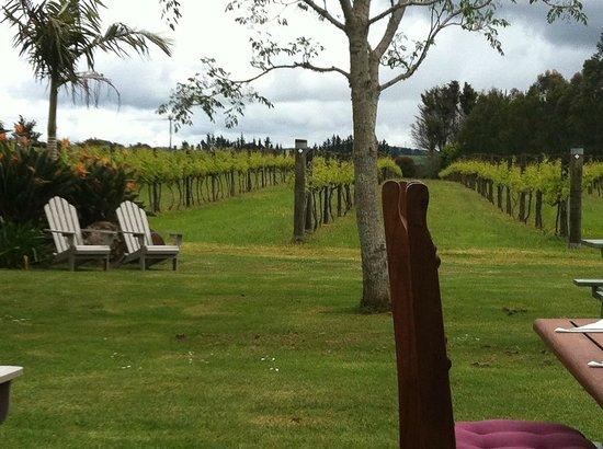 Ake Ake Vineyard Restaurant: Outlook over vines