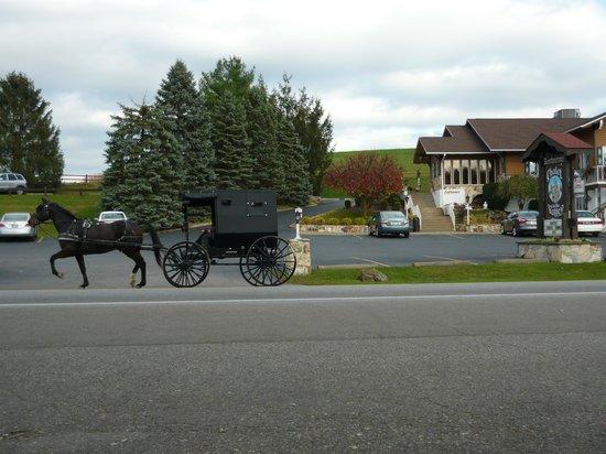 The Chalet in the Valley: Chalet in the Valley with Amish cart