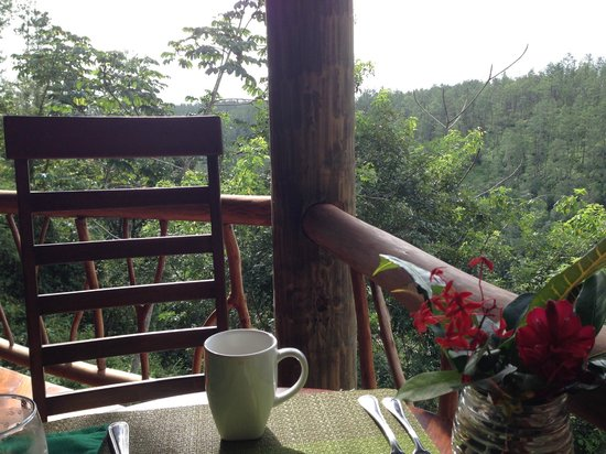 Gaia Riverlodge: coffee with a view