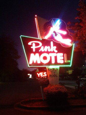 Pink Motel : Pink Mote by night