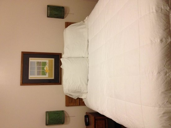 Traverse Bay Inn : Comfy bed!!
