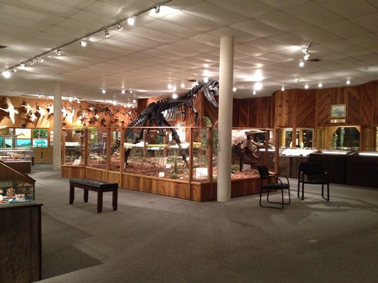 Brazosport Museum of Natural Science: The museum