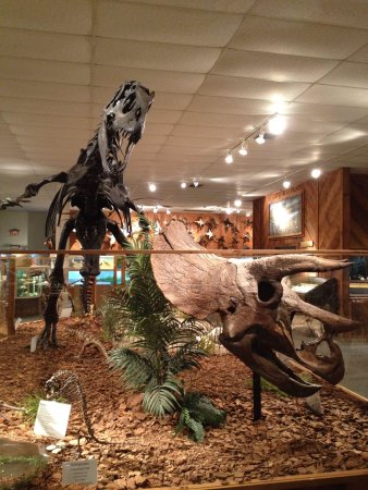 Brazosport Museum of Natural Science: Dinosaurs