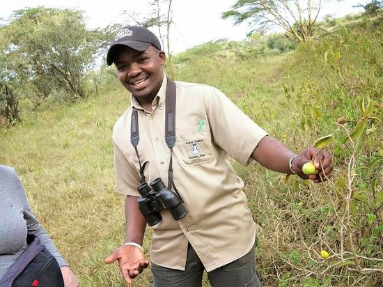 Kigio Wildlife Camp: nature walk with guide from the hotel