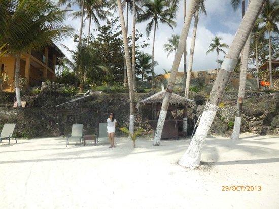 Anda White Beach Resort : View upwards from the beach