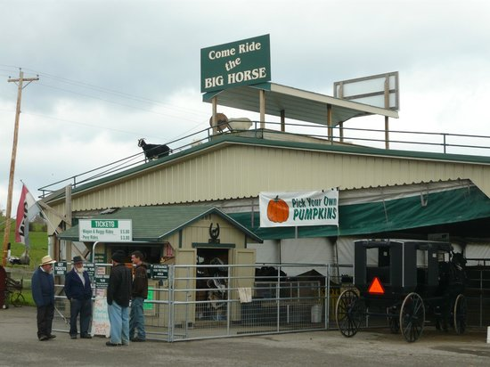 Hershberger Farm & Bakery: Live goats on the roof