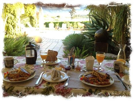 Villa Tarentaal : omelette breakfast by the pool