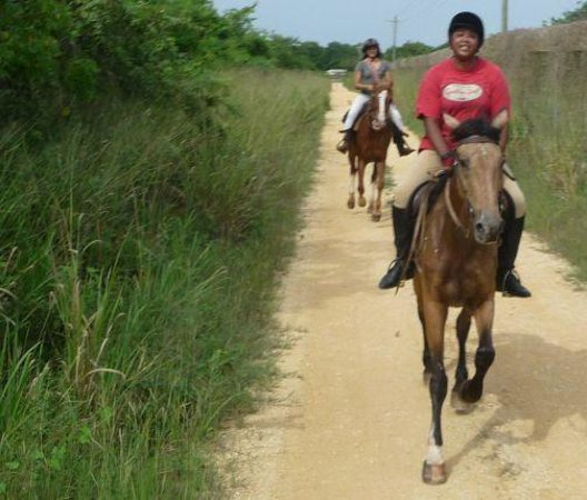 Casa de Campo Resort & Villas : Horse Riding