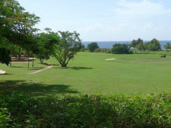 Casa de Campo Resort & Villas: Golf Course