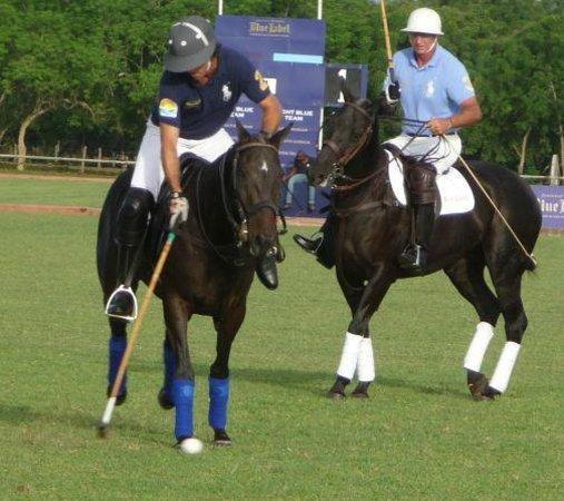 Casa de Campo Resort & Villas: Polo with Nacho Figueras