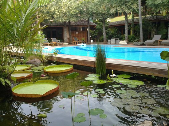 VC@Suanpaak Hotel & Serviced Apartment : Poolside
