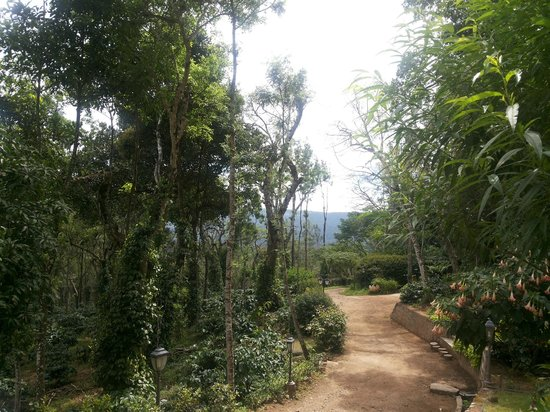 Old Kent Estates, Coorg: serene and calm